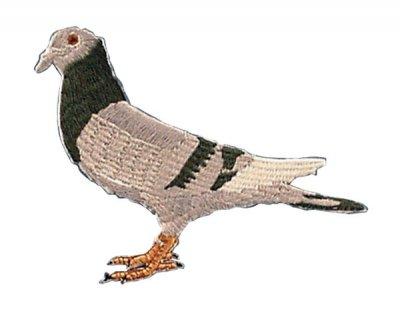 Pigeon Design Sew-on Patch