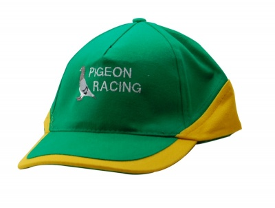 Green & Gold Cap