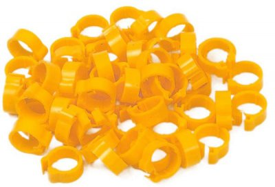 Economy Clip Rings (5mm high Race Rings) - Pack of 50