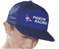 Child's Pigeon Cap