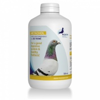 Pigeon HP Metachol 250ml
