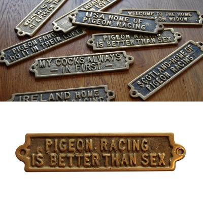 Pigeon Racing Is Better Than Sex - Brass Plaque