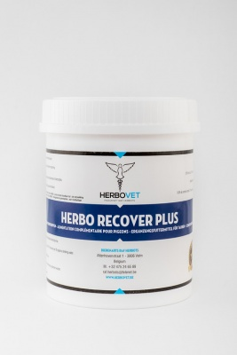 HerboVet Recover Plus 500gm