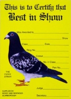 Show Award Card - Best In Show