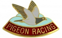 Premier Flying Pigeon Badge